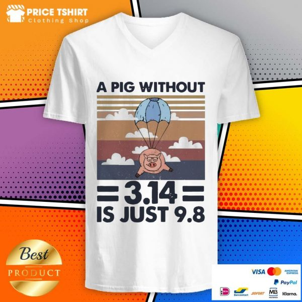 A Pig Without 314 Is Just 98 Vintage Retro V-neck